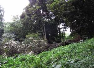 Touboku