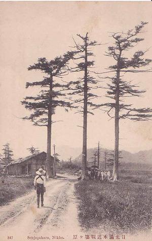 Postcardnikko2