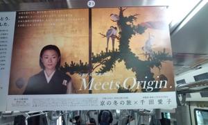 Kyotoazurewingedmagpie_2