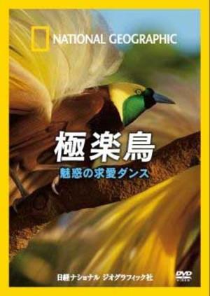 Dvdbirdsofparadise140129