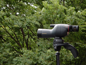 Fieldscope140710_2