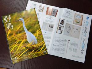 Yachomagazine140824
