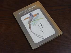 Voiceofthebird1502317