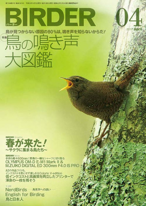 Birder170315_2