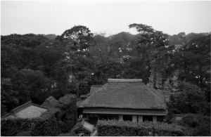 Sagiyama1
